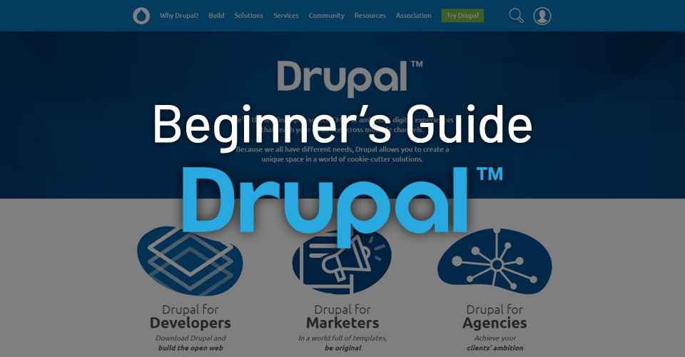 Beginner's Guide to Drupal – How to Start a Business Website